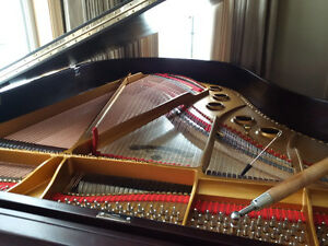 Piano Tuning and Cleaning - special combo deal