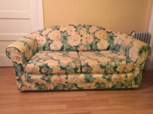 Small pull out couch