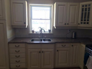 Kitchen cabinets, sink, counter top