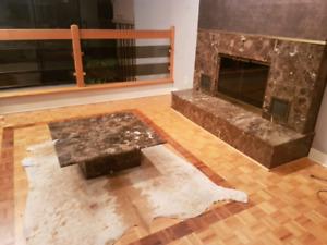 Beautiful marble fireplace and table