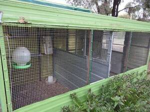 Large Double bird cage - central divider with small opening door Cavendish Southern Grampians Preview