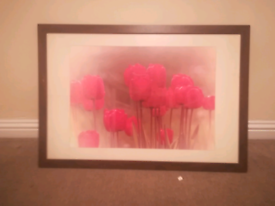 Tulip picture includes frame