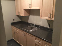 Nice two bedroom in building - March 1st
