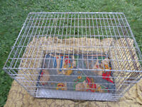 Intermediate Sized Metal Dog Cage with         Metal Tray Bottom