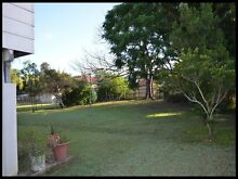 Leafy Oasis Calliope Gladstone Surrounds Preview