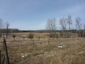 UNRESERVED AUCTION - 1 PARCEL OF LAND - BOYLE, AB