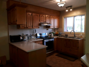 Kitchen Cabinets - Great Price!