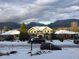 5 Bdrm - Bungalow house in Vancouver Heights