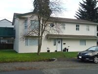 Large and bright 2 bedroom walkout basement suite for rent - OCT