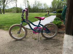 "Girls 20"" Bike"