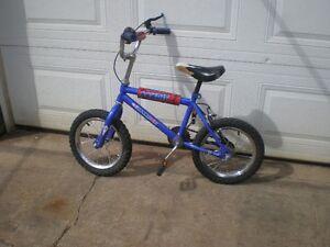 Bandit Bike