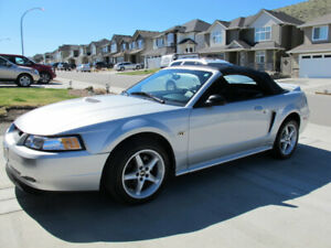2000 Mustang GT Convertible MINT Condition