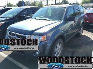 2010 Ford Escape XLT   -