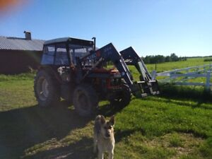 4WD Zetor Tractor with loader (bucket and round bale spear)