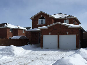 We Want to Buy Your Alliston Home!