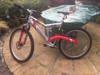 Full suspension 20 inch bike