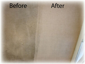 Professional carpet cleaning Edmonton Edmonton Area image 2