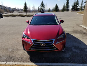 Matador red 2015 Lexus NX300h w/Luxury package for sale
