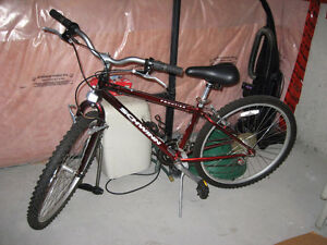 Schwinn Frontier ladies' mountain bike Kitchener / Waterloo Kitchener Area image 1
