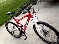 STOLEN BIKE $200.00 CASH REWARD
