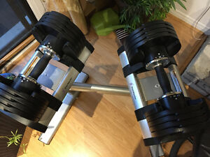StairMaster TwistLock Adjustable Dumbbells with Stand