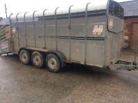 Hudson 16ft cattle trailer