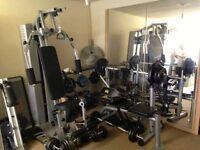 +430kg weights Marcy Sm600 Smith Machine + KETTLER BASIC multigym Infinity bench +800ultra