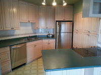 Condo For Sale or Lease, Newly Renovated, New Appliances