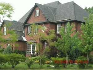 NATIONWIDE ROOFING LTD Windsor Region Ontario image 2