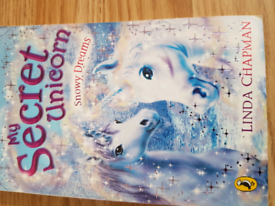 Secret unicorn book