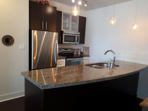 Two Bedroom Two Bathroom in Downtown Langford (Furnished)