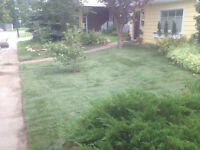 We Sod It Landscaping Free Quotations Sod Installation