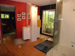 Unique architect home Gatineau Ottawa / Gatineau Area image 9