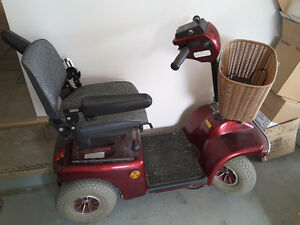 Stepside Electric scooter