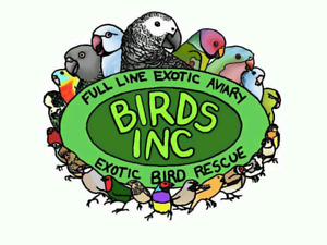 Need a bird sitter we can help ! Over 15 yrs exp