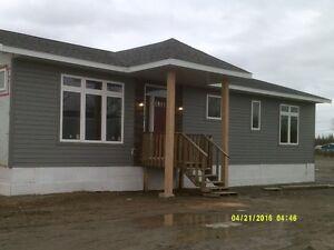 modular homes custom built