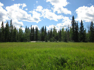 Land for Sale MLS# CA321170