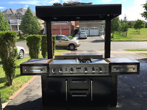 Barbecue grill with canopy and 3 big lights 2 side burner