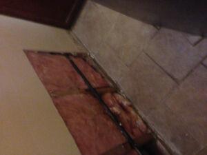 Flooded basement Restoration Windsor Region Ontario image 3