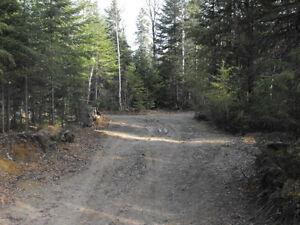 Terrain boisé au Lac Sébastien Saguenay Saguenay-Lac-Saint-Jean image 5