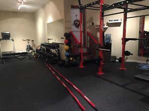 Small Group/Personal Training  Cambridge Kitchener Area image 3