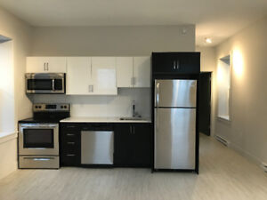 Brand New 1 Bedroom With Private Entrance