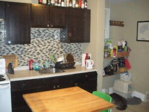 1 Bedroom Apartment For Rent Downtown Hamilton