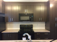Brand NEW Townhouse with 2 Masters, Parking & Yard