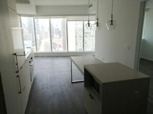 1 bedroom Condo in Downtown Toronto, BRAND NEW!