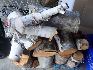 Unsplit birch firewood, just shy of a face cord