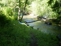 BEAUTIFUL 10 ACRES WITH CREEK RUNNING THROUGH