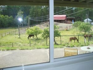 1 BEDROOM SUITE & HORSE STALL REDUCED RENT EXCHANGE BARN CHORES