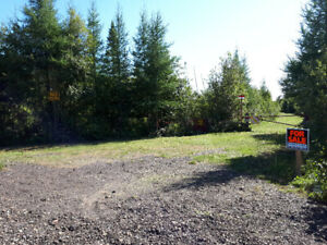 Beautiful 100 acres of property for sale ; Sturgeon/Crystal Fall