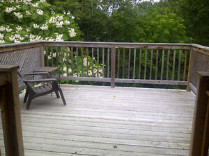 Downtown duplex apt - Victoria Park with private rooftop patio